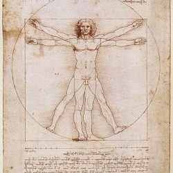 Leonardo da Vinci - The Golden Ratio - Vitruvian Man